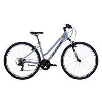 Avanti Discovery 1 Low Step Bike Grey