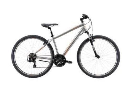 Avanti Avanti Discovery 1 Bike Silver