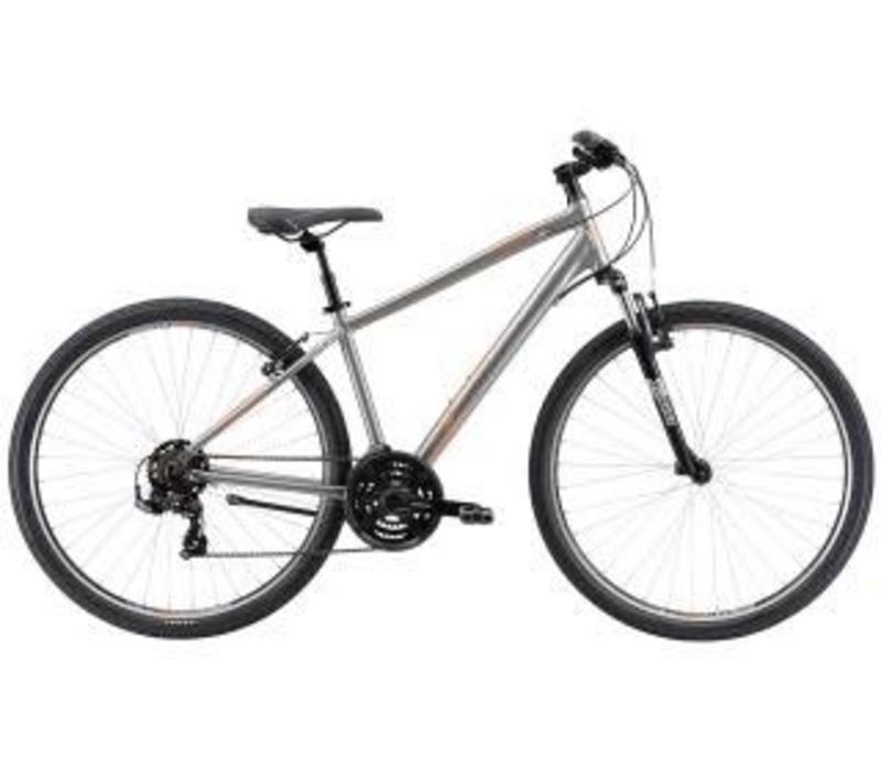 Avanti Discovery 1 Bike Silver