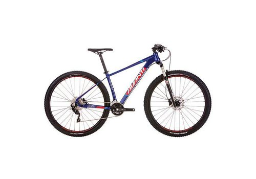 Avanti Avanti  Competitor 9.1 Mountain Bike Blue
