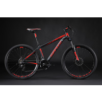 Sunpeed Zero - 29 inch Mountain Bike
