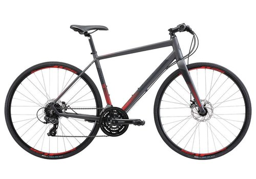Apollo Apollo Exceed 10 Disc Charcoal Black Red