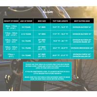 "Reark 20"" BMX Complete"