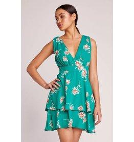 BB Dakota Garden Strolls Floral Dress