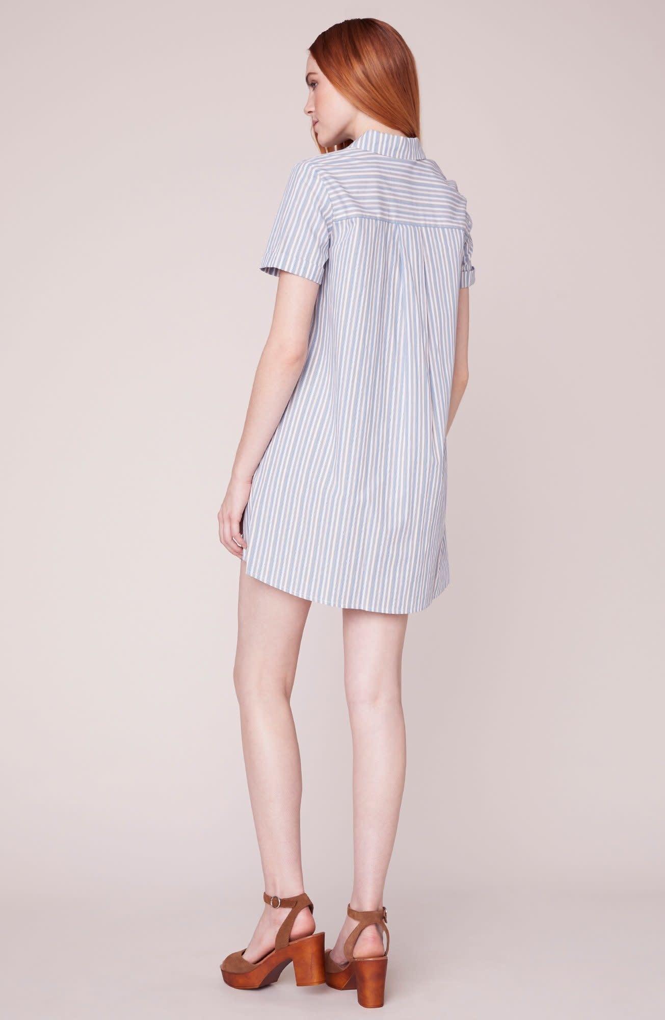 BB Dakota Stripe a Personality Shirt Dress