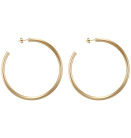 Sheila Fajl Everybody's Favorite Hoops Champagne