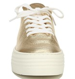 Sam Edelman Pippy Tumbled Gold Sneaker