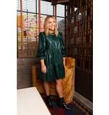 Crosby By Mollie Burch Kirby Dress Evergreen