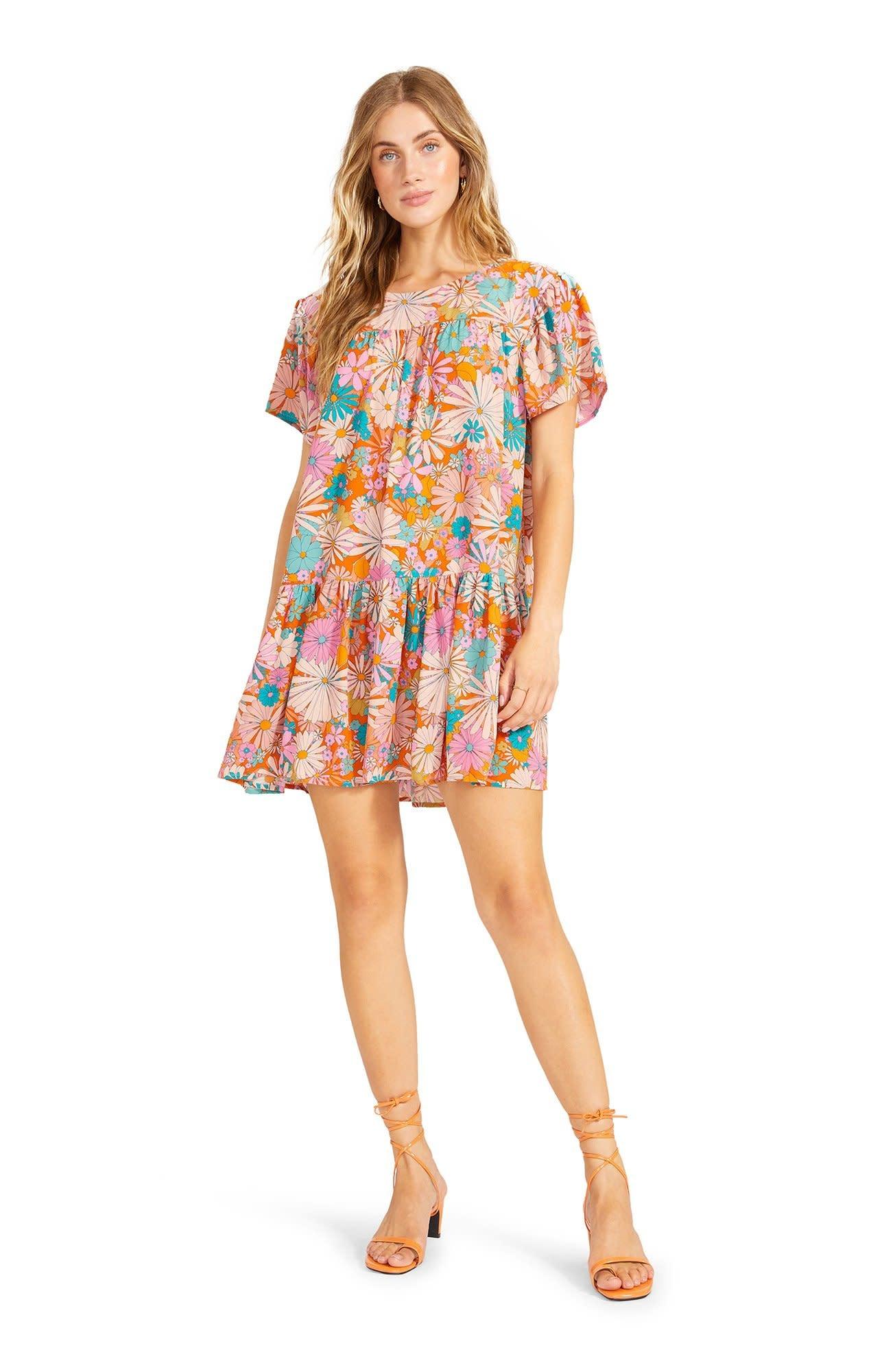 BB Dakota In Retrospect Dress