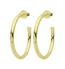 Sheila Fajl Smaller Everybody's Favorite Hoops Gold Polished