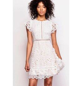 BB Dakota Ariane Flare Dress