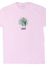 Stingwater Not a House Plant Pink Tee