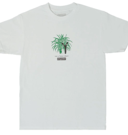 Stingwater Not a House Plant White Tee