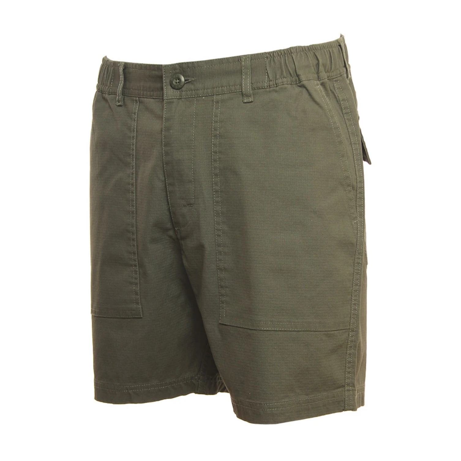 RVCA All Time Surplus Short Cactus