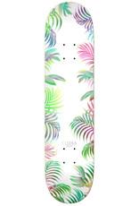 "Real Skateboards Chima Chiller 8.25"""