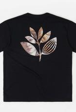 Botticelli Plant Tee Black