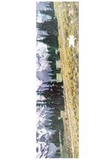 Grizzly Griptape Antique Postcard Griptape