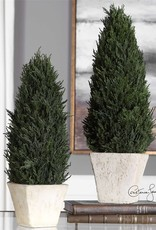 Cypress Cone Topiaries Set/2