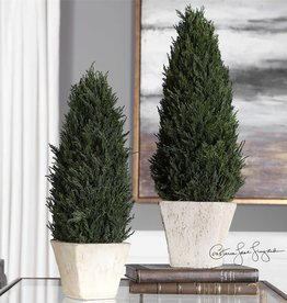 Cypress Cone Topiaries Set/2