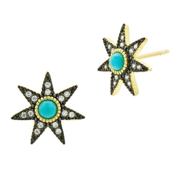 Freida Rothman Stellar Studs Turq