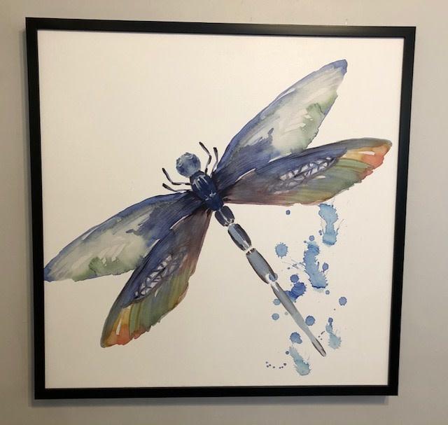 Dragonfly 1 36 x 36