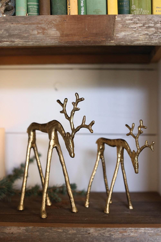Rex Reindeer
