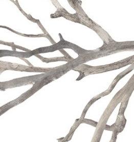 Enfolding Boughs II - 24 x 60
