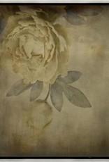 Memoire d'une Fleur I - 30 x 39