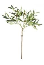 """Olive Stem with Olives 22"""""""