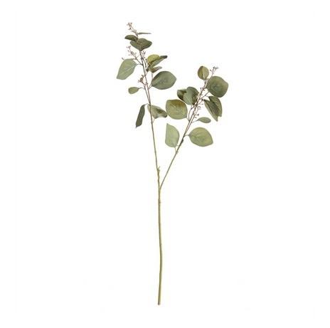 """Silver Dollar Eucalyptus Branch 32"""""""