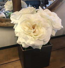 Roses in Medium Square Container