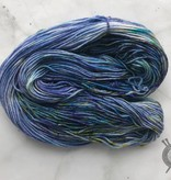 Western Sky Knits Forget Me Not on Merino 17 Worsted from Western Sky Knits