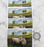 Sheep Watercolor Note Cards by Diane Medgaarden Nelson