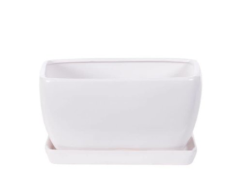 """Hill's Imports Rectangle Matte White Pot and Saucer 7.5"""""""