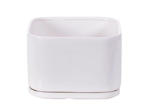 """Hill's Imports Square Matte White Pot and Saucer 7.5"""""""