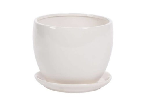 Hill's Imports Glazed Round Pot With Saucer