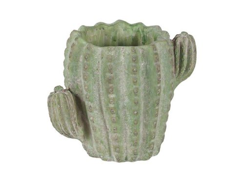 Hill's Imports Round Cactus Cement Pot