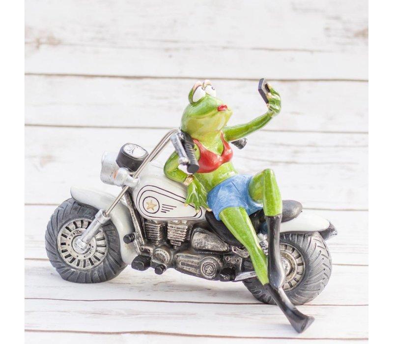 Frog on Motorcycle 25 x 16 x 19cm