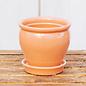 Color Glaze Planter