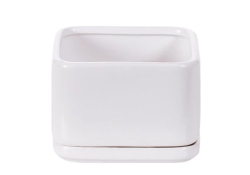 Hill's Imports Square Matte White Pot with Saucer 3.75""