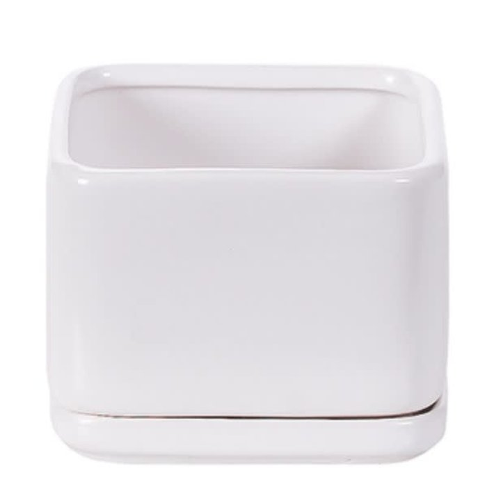 """Square Matte White Pot and Saucer 4.5"""""""