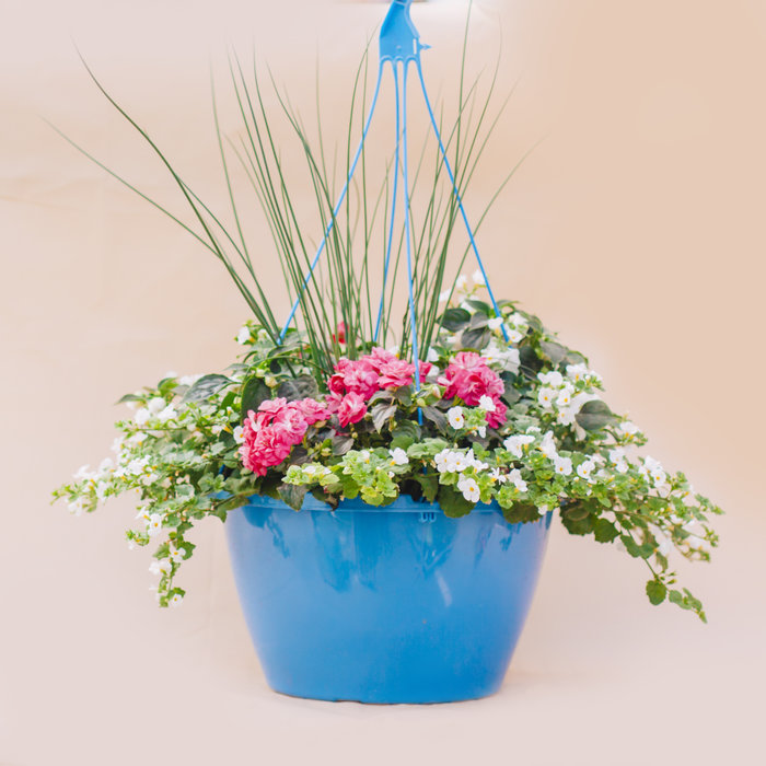 "Hanging Basket 14"" Shade"