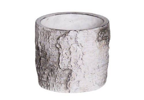Hill's Imports Birch Bark Round Cement Cylinder 3.75""