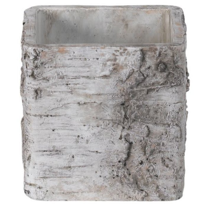 Birch Bark Square Cement Pot 4""