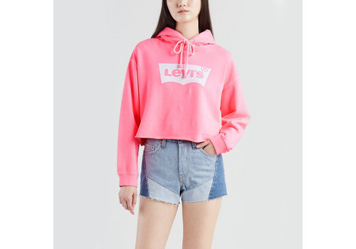 Levi's Graphic Raw Cut Hoodie