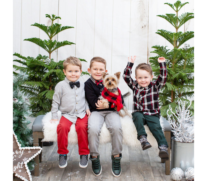 Christmas Photo Session October 26