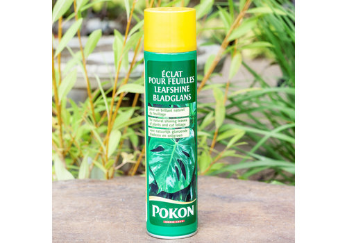 Pokon Leaf Shine 600ml