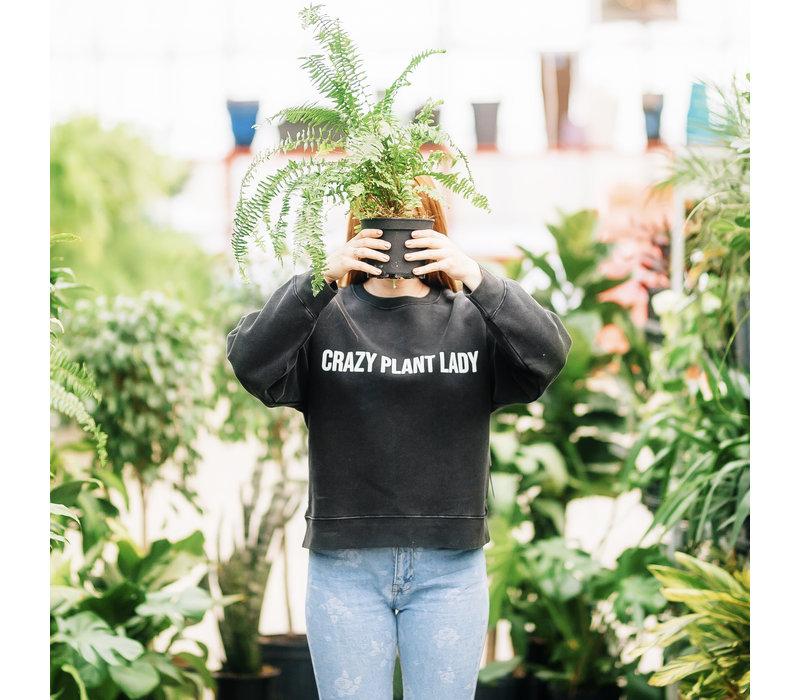 Crazy Plant Lady Crew