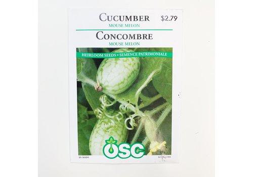 OSC Cucumber Mouse Melon