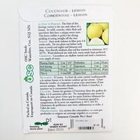 Cucumber Lemon